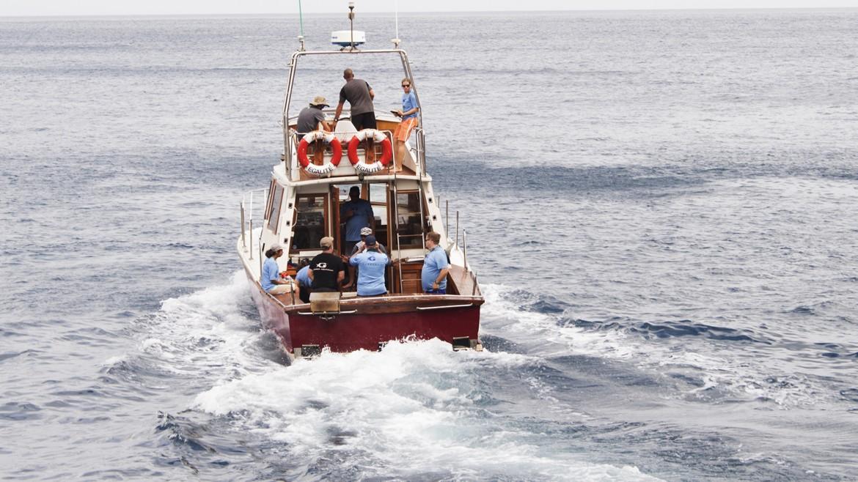 Egalite-sports-fishing-St-helena.jpg