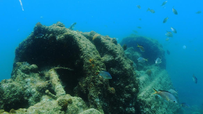 Wreck-diving-st-helena-island.jpg