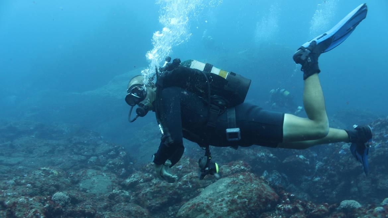 dive-St-Helena.jpg