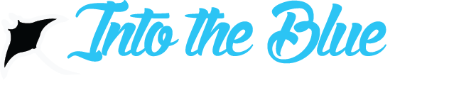 into-the-blue_a-logo.png
