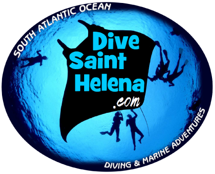 Dive-St-Helena-3.png