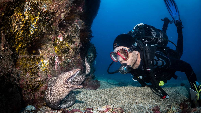 Diving-in-St-Helena.jpg