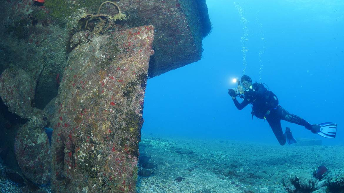 Diving-in-St-helena-service.jpg