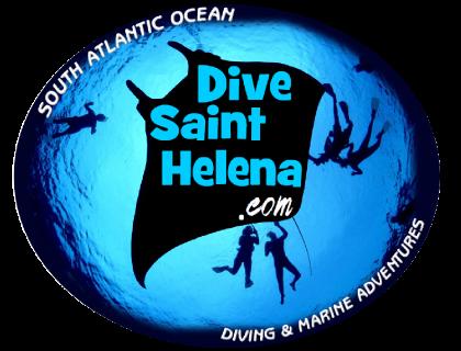 Original-dive-round-logo.png