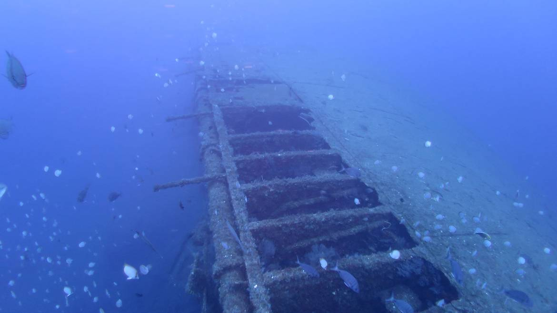 St-Helena-diving.jpg