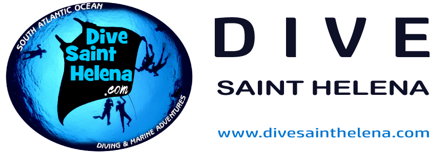 current-dive-saint-helena.png
