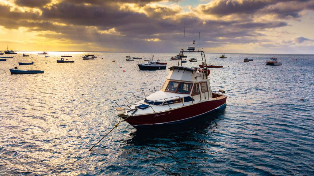Egalite - Sports fishing boat
