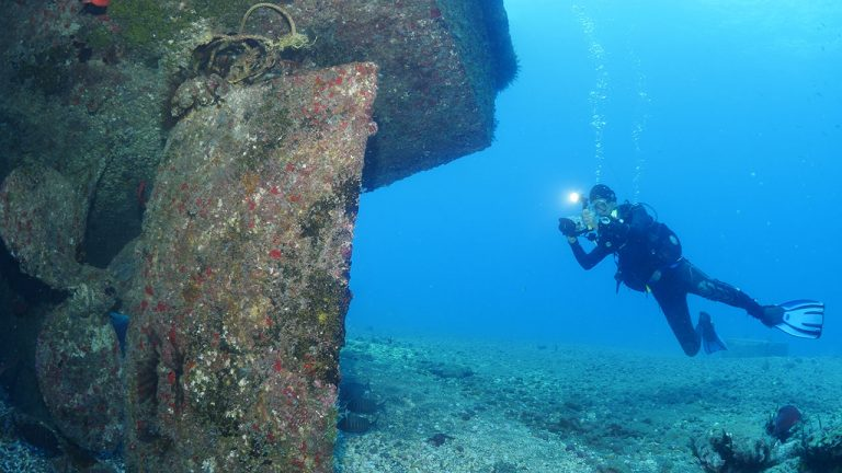 St Helena Diving